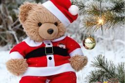 """Apgāds Jumava laidis klajā bērnu grāmatu  """"Kā lācītis Rūdis Ziemassvētkiem gatavojās"""""""