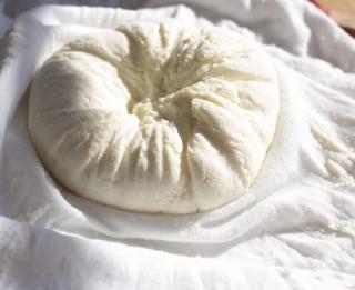 Kas jāņem vērā, lai mājās gatavots siers būtu izdevies