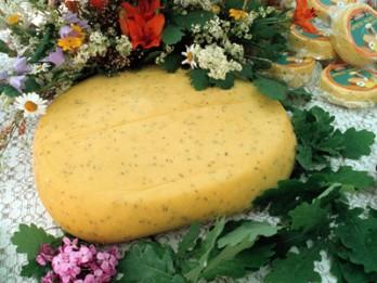 Recepte. Kā pagatavot gardu Jāņu sieru