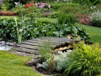 12 dārzu maģija.  Svari un viņa dārzs. Izsmalcinātība un romantika!