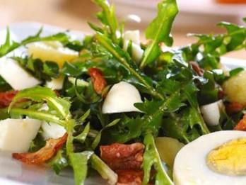 Pieneņu lapu salāti