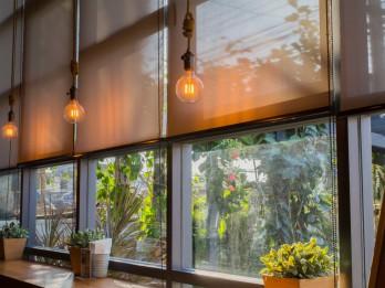 Žalūzijas katrai istabai: izvēles ieteikumi