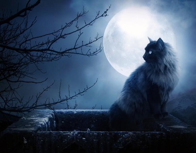 Astrologu 10 padomi pilnmēness laikam