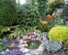 """Video: #1 """"12 dārzu maģija"""" – Kas īpašs Auna dārzā?"""