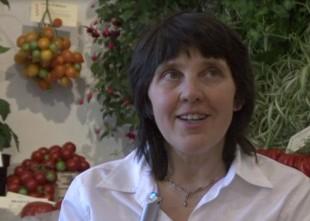 """Video: """"Sarkanos importa bumbuļus grūti nosaukt par tomātiem""""': intervija ar tomātu audzētāju Elgu Bražūni"""