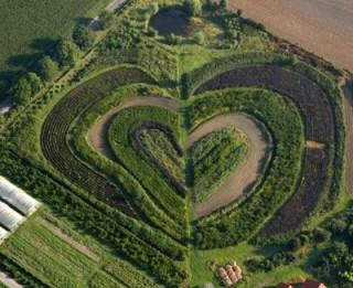 Mīlētāju dienā arī māte Zeme mūs sveic ar īpašām, dabas radītām sirdīm