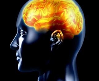 Astoņas smadzeņu īpatnības, par kuru esamību varbūt nenojaušam