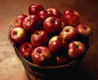 Ko der zināt par āboliem